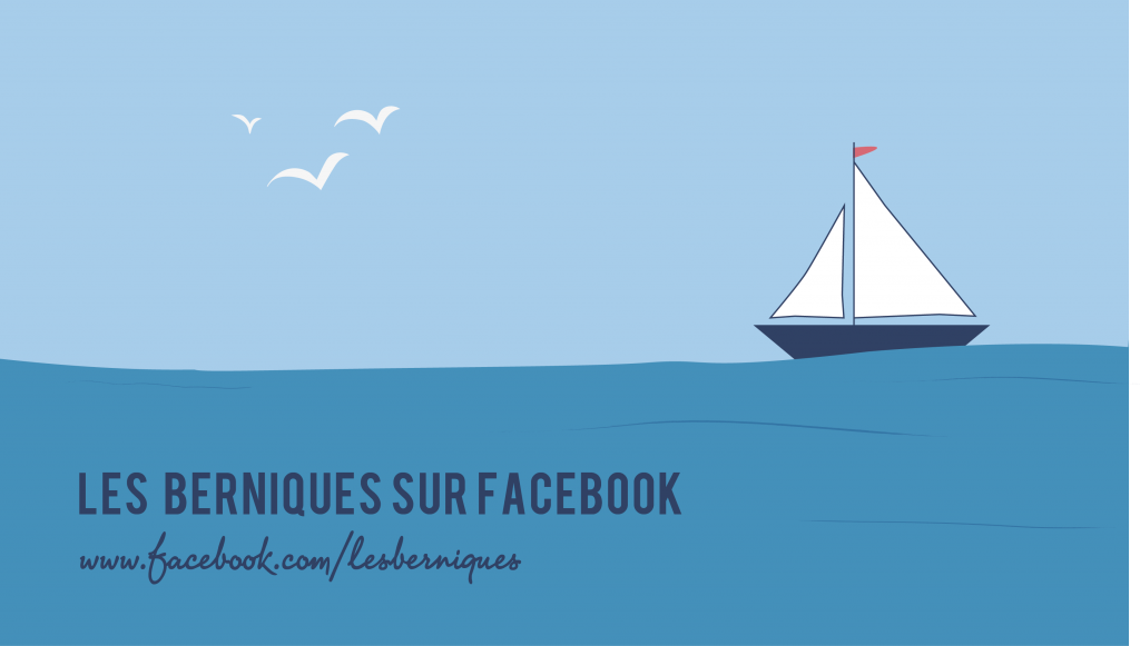 lesberniques-facebook